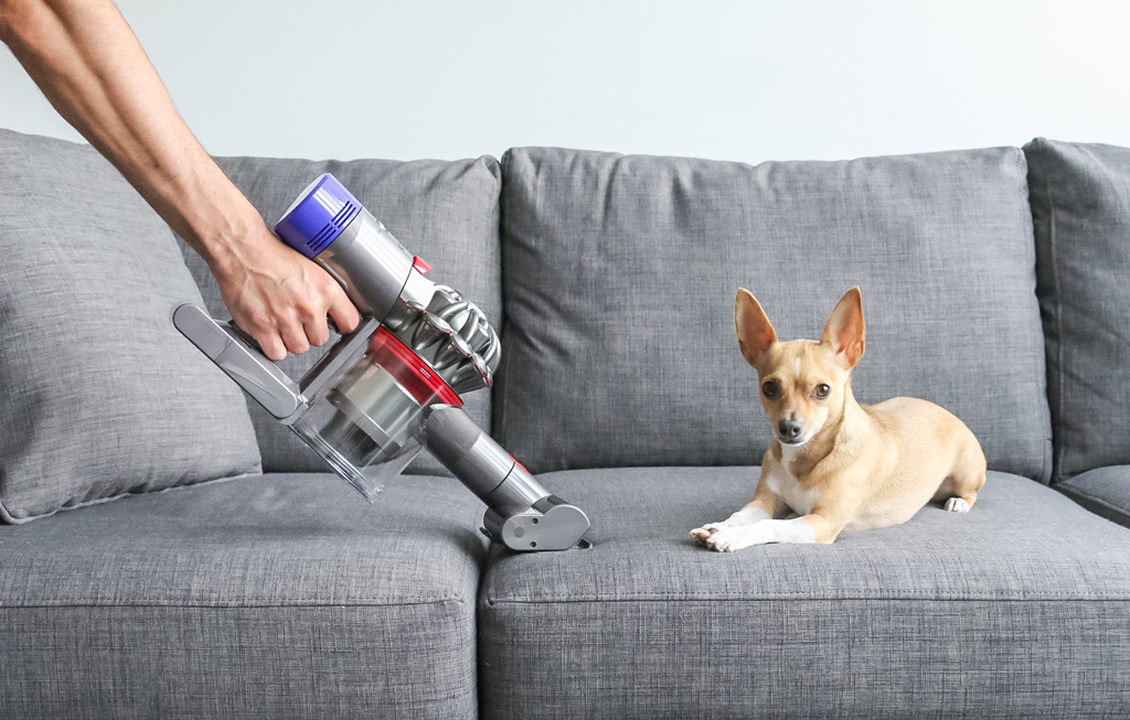 The Vacuum Successful Young Professionals are Buying